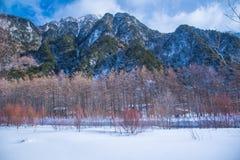 日本的冬天场面 库存照片