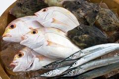 从日本的海鲜 图库摄影
