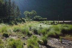 日本的湖风景 图库摄影