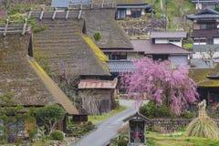 日本的田园诗农村风景 库存图片