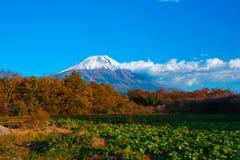 日本的秋天风景 免版税图库摄影