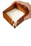 日本米 免版税库存图片