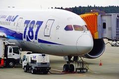 从日本航空公司全日空(阿那)的一架波音787 Dreamliner飞机 免版税库存照片