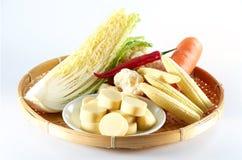 日本豆遏制 免版税库存图片