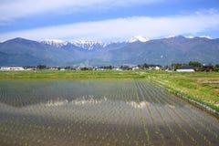 日本阿尔卑斯和稻田 库存图片