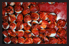 日本食物,在寿司的宏指令 库存照片
