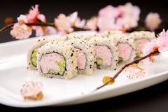 日本食物-寿司和佐仓 库存图片