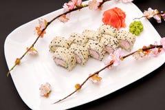 日本食物-寿司和佐仓 免版税库存图片