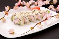 日本食物-寿司和佐仓 图库摄影