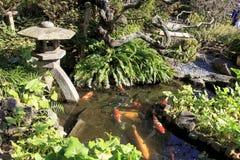 日本鲤鱼和灯笼在一个池塘在镰仓日本 免版税库存图片