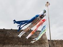 日本鲤鱼旗子五颜六色的Koi标志日本节日 库存图片