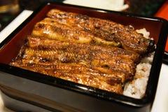 日本鳗鱼饭碗 免版税库存照片