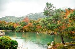 日本,神户- 2017年1月17日 库存照片