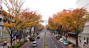 日本11月14,2017东京:东京日本城市街道在harajuku区域与树和秋叶在街道的双方 库存图片