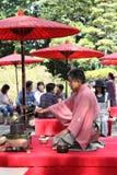 日本绿茶仪式在庭院里 免版税库存图片
