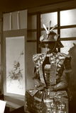 日本主题 免版税库存图片