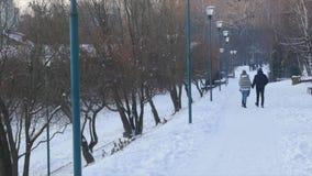 日横向公园晴朗的冬天 人在冬天公园走 影视素材