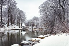 日横向公园晴朗的冬天 库存图片