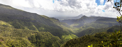 日横向毛里求斯山本质晴朗的木头 木头和山,全景 免版税库存图片