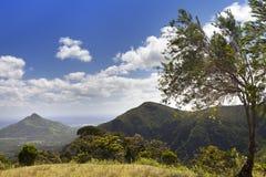 日横向毛里求斯山本质晴朗的木头 木头和山 免版税库存照片