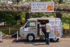 日立海滨公园 免版税图库摄影