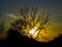 日落、天空和树 免版税库存图片