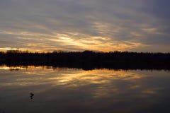 日落、太阳光和池塘 库存图片