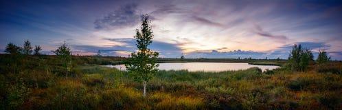 日落全景风景在湖,北部,西伯利亚,寒带草原的 免版税图库摄影
