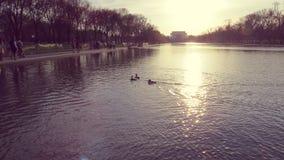 日落反射水池 库存图片