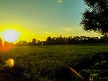 日落和农场 免版税图库摄影