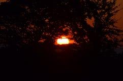日落和剧烈的天空在洛杉矶 免版税库存图片