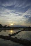 日落和反映01 库存照片