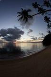 日落和在热带海岛上的可可椰子树 免版税库存图片