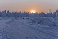 日落和日出 33c 1月横向俄国温度ural冬天 树橙色天空和剪影在天堂背景的  冷淡的晚上,雪arou 免版税库存照片
