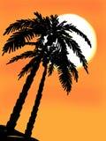 日落和棕榈剪影背景 向量例证