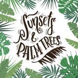 日落和棕榈树 免版税库存图片