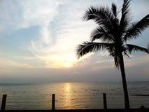 日落和椰子 免版税库存图片