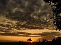 日落在一个玻利维亚的密林 库存图片