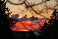 日落在俄勒冈 库存照片