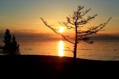 日落在冬天贝加尔湖 库存照片