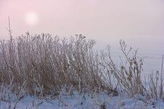 日落在冷漠的乡下 库存图片