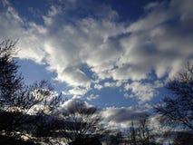 日落在华盛顿特区的邻里 免版税库存图片