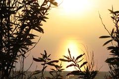 日落在地中海 免版税库存照片