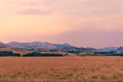 日落在坎特伯雷,新西兰 免版税库存照片