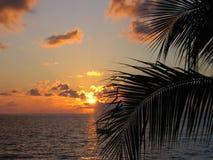 日落在埃伊纳岛希腊 免版税图库摄影