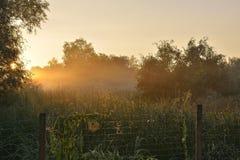 日落在夏天 图库摄影