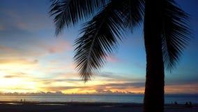 日落在婆罗洲 免版税库存图片