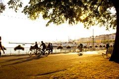 日落在日内瓦 免版税图库摄影
