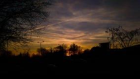 日落在有树的城市 免版税库存图片