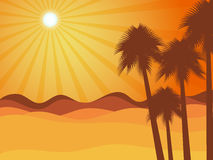 日落在有棕榈树的沙漠 judean的沙漠 库存照片